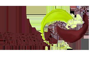 Wimmer1 Logo